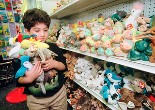 Beanie Babies weren't just a fad like hula hoops or pet rocks, they were a mass mania.