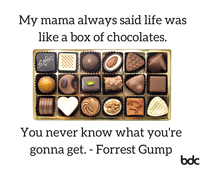 Life is like a box of chocolates Forrest gump