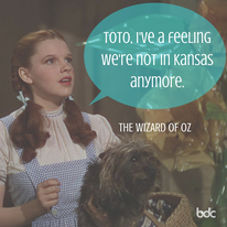 Toto, I've a feeling we're not in Kansas anymore.