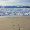Leave No Trace: How to Eliminate Your Digital Footprint
