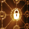 Cyber Liability <em>Insurance</em>: Do Businesses Really Need It?
