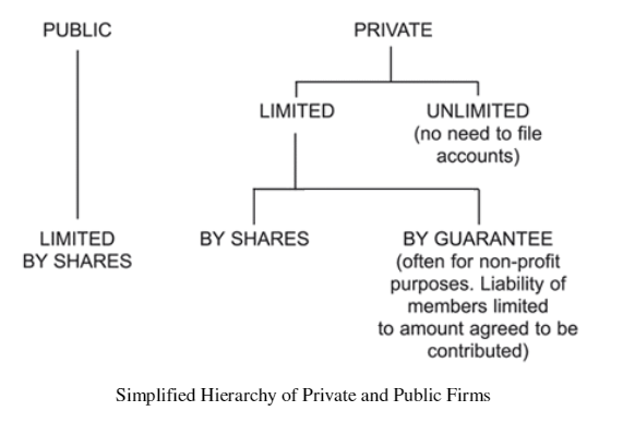 Simplified Hierarchy of Private and Public Firms